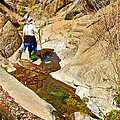 Hiker On Window Trail In Chisos Basin In Big Bend National Park-texas   by Ruth Hager