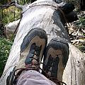 Hiking Boots by Tim Hester