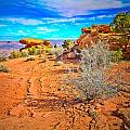 Hiking In Canyonlands by Tara Turner