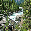 Hiking In Mistaya Canyon Along Icefield Parkway In Alberta by Ruth Hager