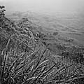 Hiking On Maui Hawaii by Edward Fielding