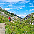 Hiking On Savage River Trail In Denali Np-ak    by Ruth Hager