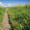Hiking Path In Devon England by Chevy Fleet