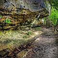 Hiking Trail by Alexey Stiop