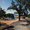 Hiking Trail by Joe Fernandez