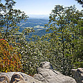 Hiking View by Melinda Fawver