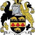 Hill Coat Of Arms II Irish by Heraldry