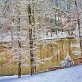 Hillside Snow - Winter Landscape by Barry Jones