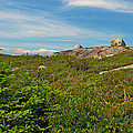 Hillside View Of Swissair Flight 111 Memorial In Whalesback-ns by Ruth Hager