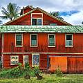 Hilo Town House by Dan Sabin