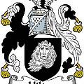 Hilton Coat Of Arms Irish by Heraldry