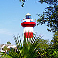 Hilton Head Lighthouse And Palmetto by Duane McCullough