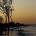 Hilton Head Sunset by Lisa Bryant