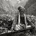 Himalayan by CoSurvivor