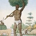 Hindu Servant Cutting Grass, The by Franz Balthazar Solvyns