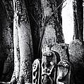 Hindu Shrine by Tim Gainey