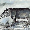 Hippo by Anthony Mwangi