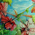 Hiroko's Hibiscus 3 by Rachel Lowry