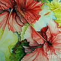 Hiroko's Hibiscus by Rachel Lowry