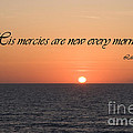 His Mercies Are New Every Morning by Jill Lang