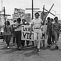 Hispanic Anti-viet Nam War March Tucson Arizona 1971 Black And White by David Lee Guss