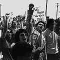 Hispanic Anti-viet Nam War Rally Tucson Arizona 1971 Black And White by David Lee Guss