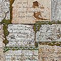 History Of Hill Ward Asylum by Tikvah's Hope