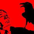 Hitchcock In Red by Jera Sky