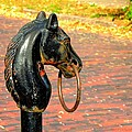 Hitching Post by Mary Williamson
