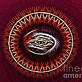 Hj-eye by Vix Edwards