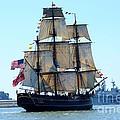 Hms Bounty Ahoy by Brenda Dorman