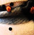 Hobo Snowman Iv by Jani Freimann