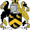 Hodson Coat Of Arms Irish by Heraldry