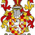 Hoey Coat Of Arms Irish by Heraldry