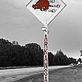 Hog Sign by Scott Pellegrin