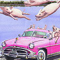 Hogs In A Hot Pink Hudson Hornet by Catherine G McElroy