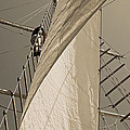 Hoisting The Mainsail In Sepia by Jani Freimann