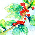 Holiday Holly by Cynthia Roudebush
