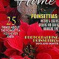 Holiday Home Magazine Cover by Mike Nellums