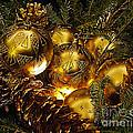 Holiday Ornaments by Nick Zelinsky