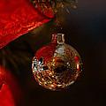 Holiday Season by Linda Shafer