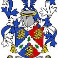 Holligan Coat Of Arms Irish by Heraldry