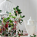 Holly And Berries Birdcage by Amanda Elwell