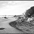 Holly Beach Now Wildwood New Jersey 1907 Vintage Photograph by A Gurmankin