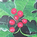 Holly Berries by Sally Rice