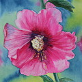 Hollyhock by Mary Pumpelly-Knowland