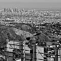 Hollywood And Los Angeles City Skyline by David Lobos