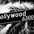 Hollywood Boulevard Street Sign in Black and White by Paul Velgos