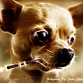 Hollywood Fifi Chika Chihuahua - Electric Art - With Text by Wingsdomain Art and Photography