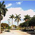Hollywood Florida by Dora Sofia Caputo Photographic Design and Fine Art